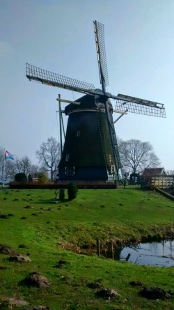 Windmill by the Amstel canal