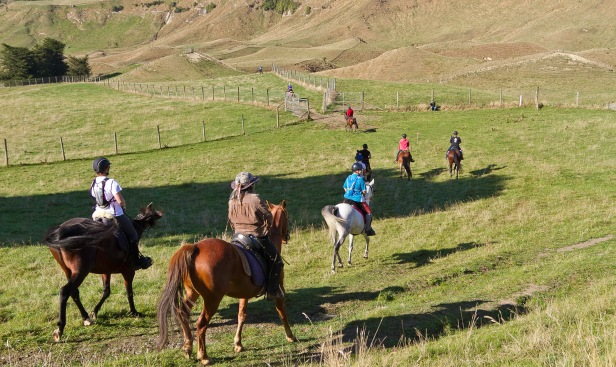 The horses and riders start the chase